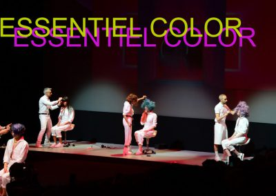Essentiel Color – 2017 Collection